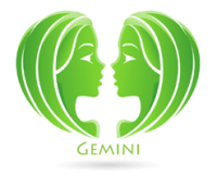 An Overview of Gemini Traits