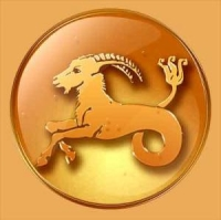 Capricorn Signs And Meanings